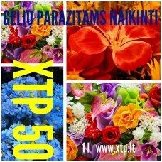 Priemonė gėlių parazitams naikinti